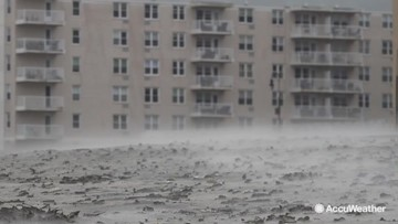Whipping winds create trouble for Long Island