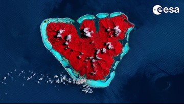 Mother Nature's Valentine: A Heart-Shaped Island Seen From Space