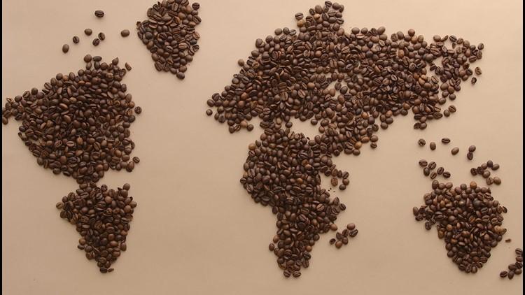 World's Best Coffee Bean Found!