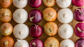 These brands of onions are recalled after salmonella outbreak in 37 states