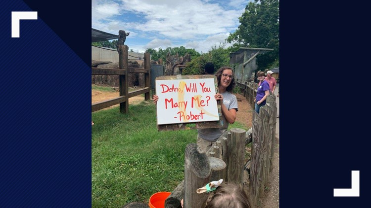 Morristown couple gets engaged at Zoo Knoxville