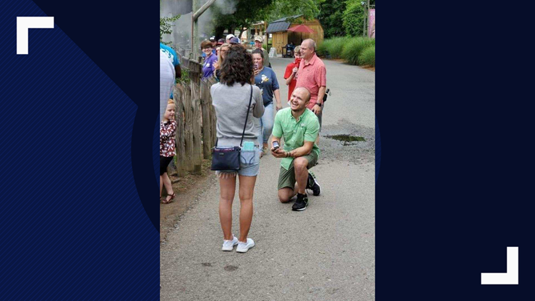 Morristown couple gets engaged at Zoo Knoxville.