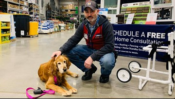Lowe's employee builds custom wheelchair for injured dog found limping on a highway in Shelby