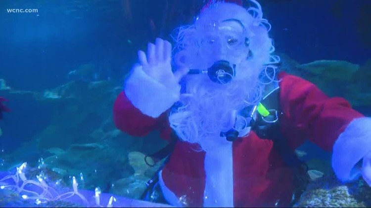 "Christmas underwater at ""Sea of Lights"""