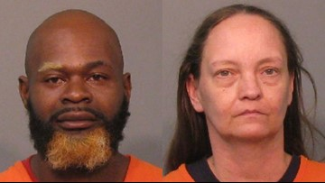 2 charged with animal abuse after dead puppies found at Rock Hill home