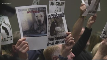 'This is heartbreaking' | Charlotte won't ban dog tethering, but could restrict circuses