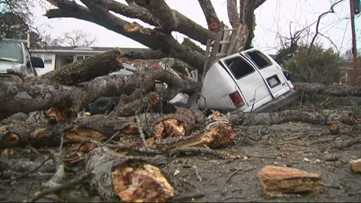 Massive tree falls on vehicle in Cotswold