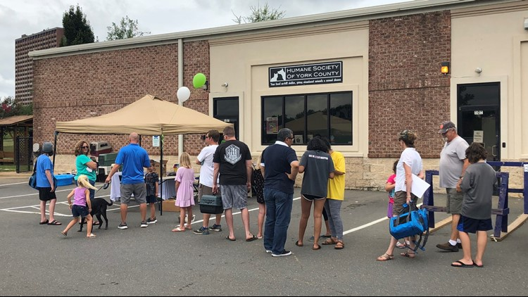Hundreds of pets across the Carolinas find new homes during 'Clear the Shelter' drive