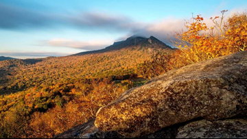 Grandfather Mountain is already seeing fall colors