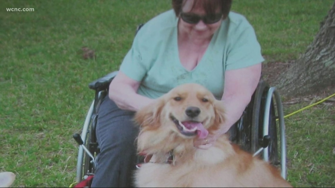 Carolina Has Heart: Man and his therapy dog bring joy to others