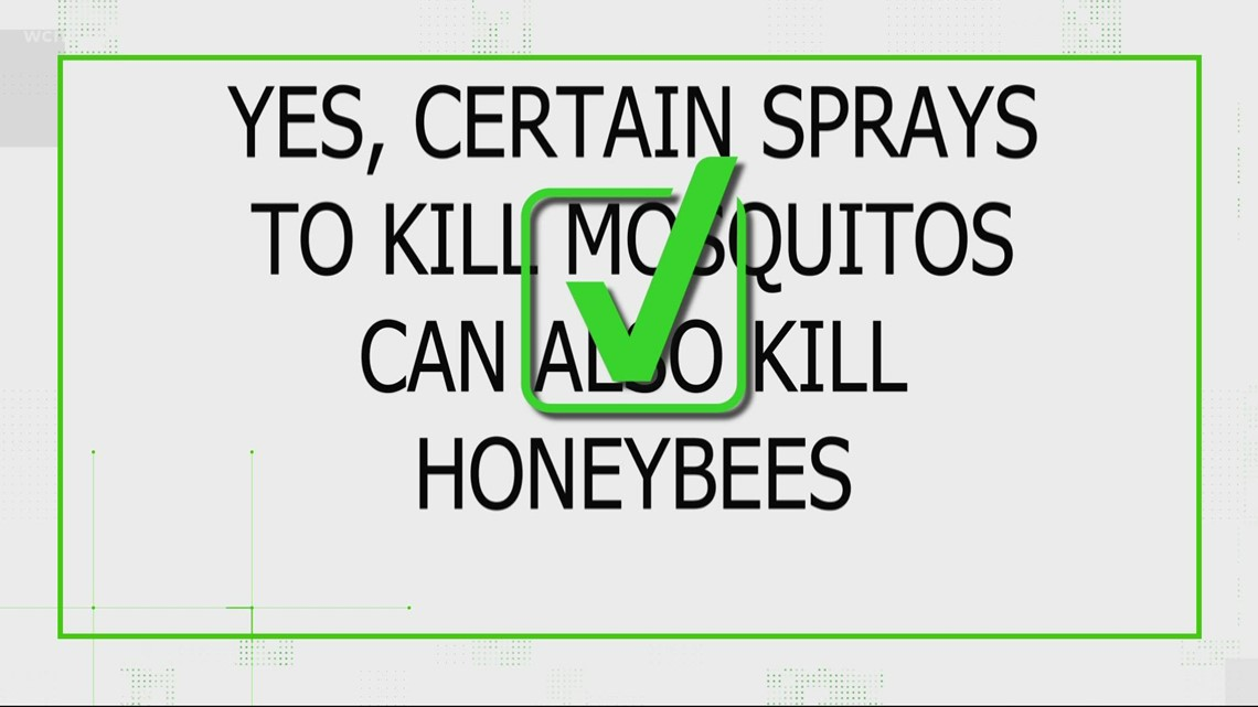 VERIFY: Yes, certain mosquito-killing sprays can also kill honeybees