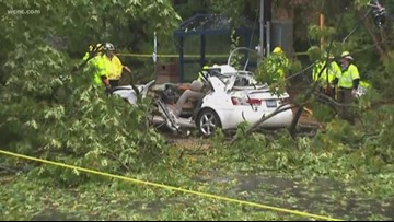 After heavy rains, a tree fell onto a car in northwest Charlotte