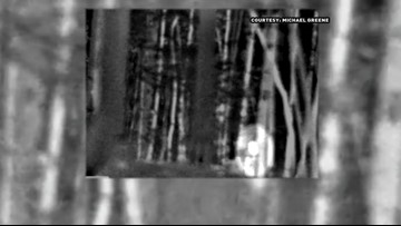 Seeking Bigfoot: Investigator Believes Sasquatch Lurks in Uwharrie Forest