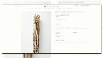 Anthropologie 'sold out' of $42 bundle of sticks