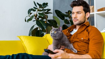 Men say having a cat takes the pressure off being single