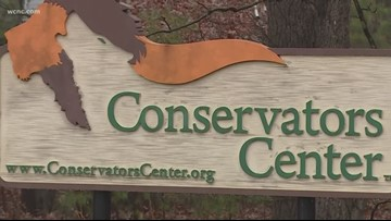 Officials calling for stricter legislation in North Carolina zoos