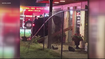 Deadly crash leaves hole in animal hospital