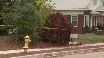 Chevy Storm Tracker: Tree down in Mooresville