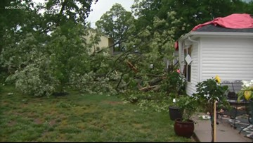 Tree falls on a house in Belmont after severe weather