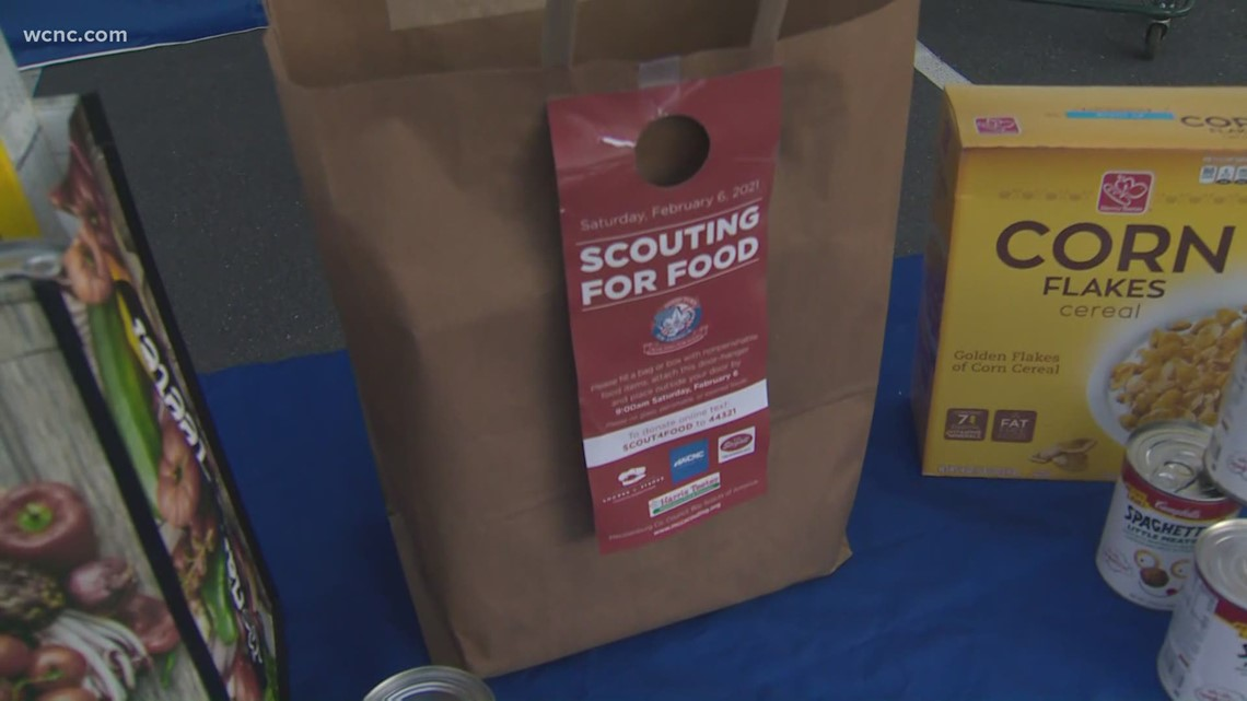 Scouting For Food collections underway