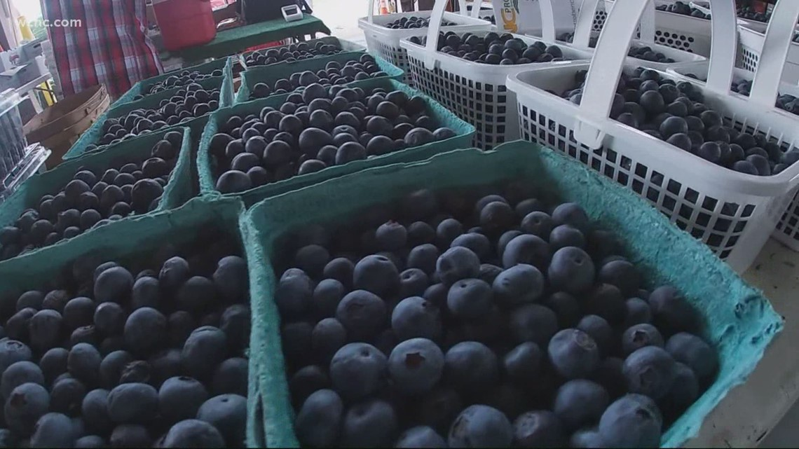Severe weather causes NC blueberry shortage, drives up cost