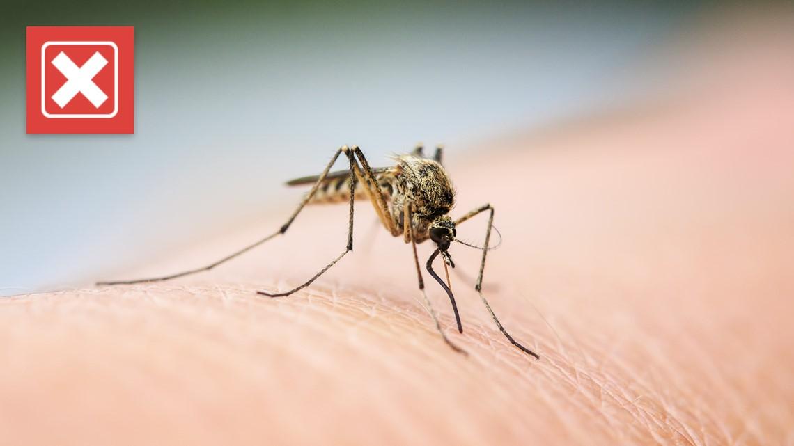 VERIFY: No, you shouldn't use Listerine as a mosquito repellent