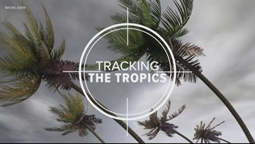 Tracking the Tropics: Tropical wave moving
