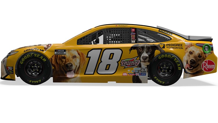 NASCAR adoptable dogs