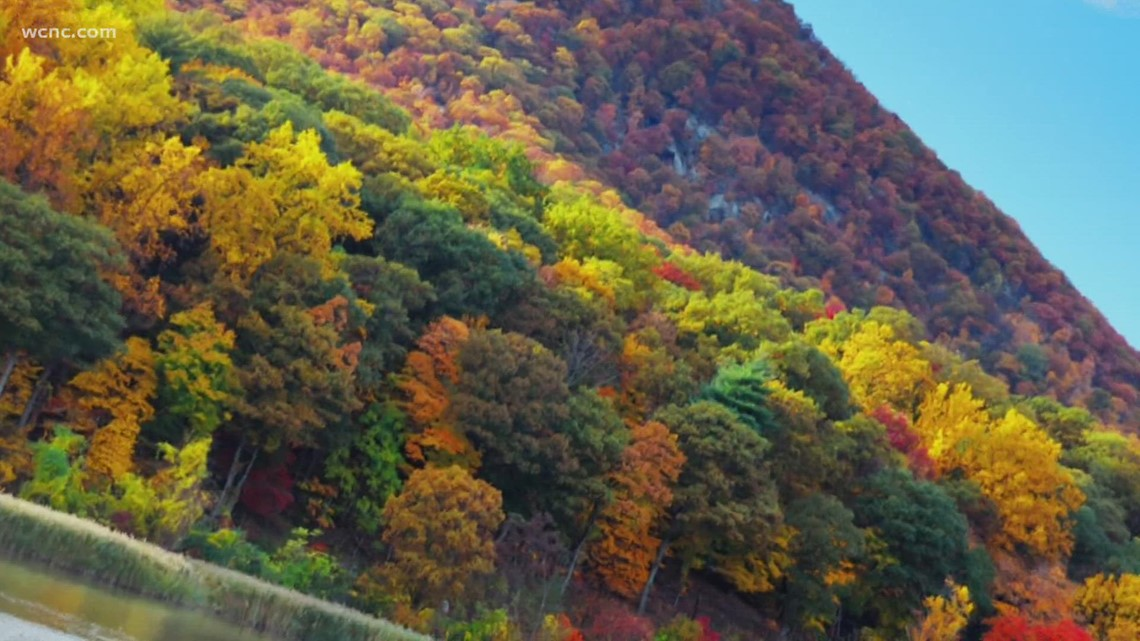 This weekend will be a great time to see the fall foliage