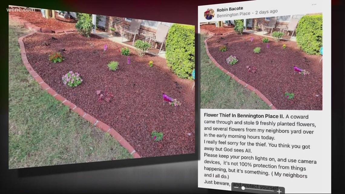Flowers stolen from numerous Charlotte neighborhoods