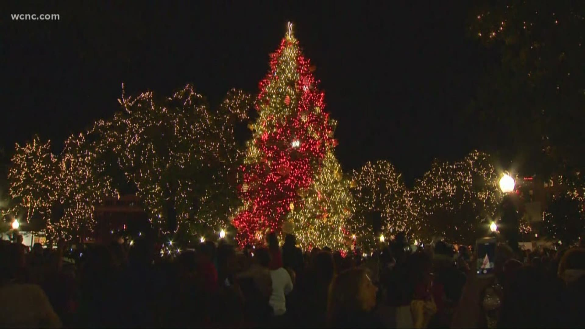 The Best Places To See Christmas Lights Around Charlotte Wcnc Com
