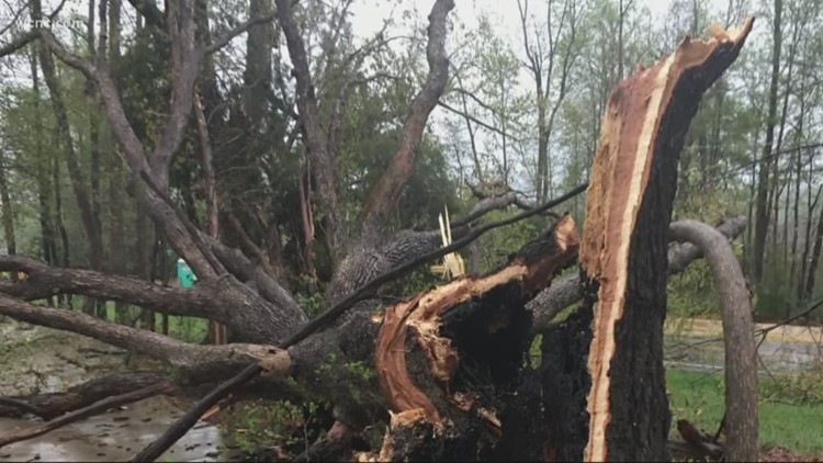 Severe storms could have a drastic effect on power lines for some neighborhoods