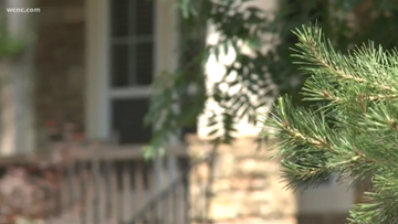 Charlotte-area nanny pleads guilty to misdemeanor child abuse