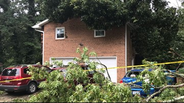 Tree falls on house in Alexander County area