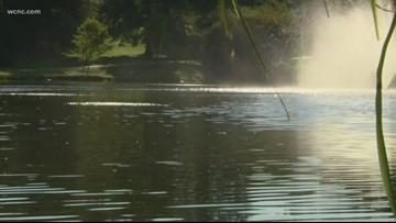 Toxic algae found in Davidson pond