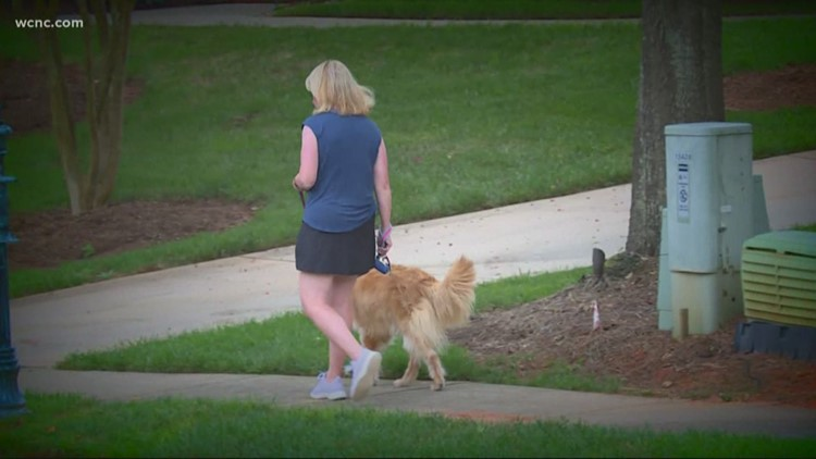'I was very afraid' | Neighborhood on alert after woman's scary experience with man in van