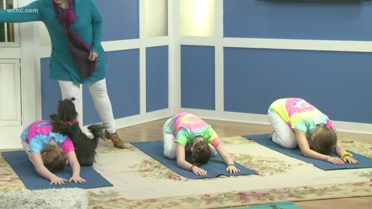 'So You Think You Can Bark' Winning Pet-testants teach Yoga