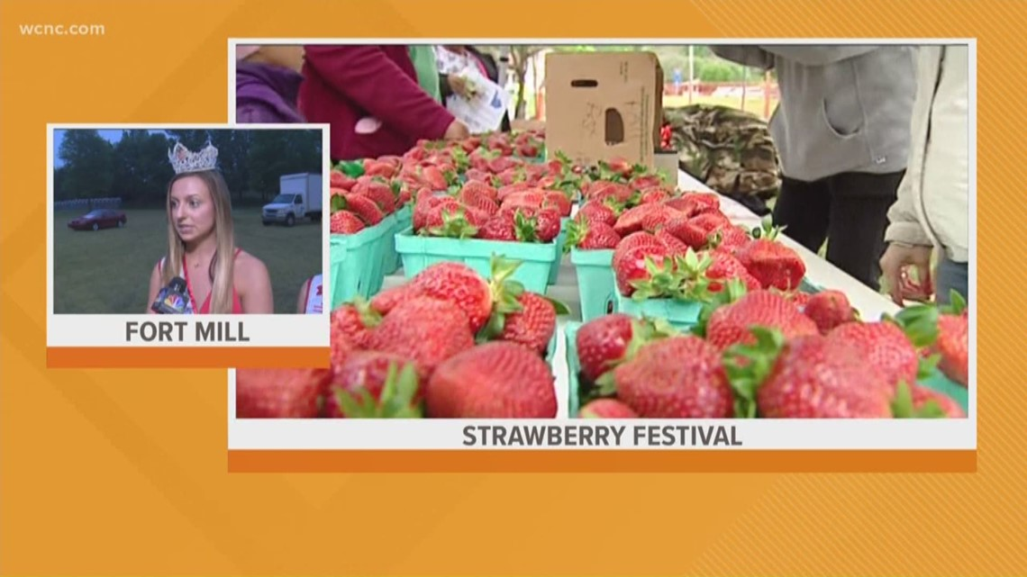 com Carolina About To South The Need You Festival What Strawberry Know Wcnc