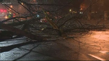 Downed tree blocks busy part of Colony Road in South Park