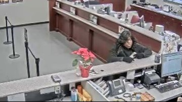 'Bad Wig Bandit' strikes again, robs bank in Hendersonville