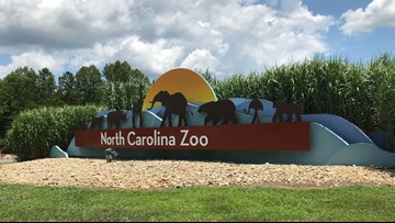 Employee dies in workplace accident at North Carolina Zoo