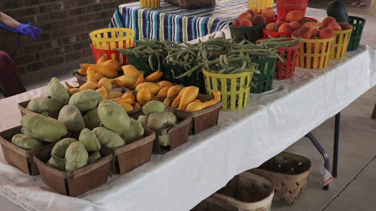 Program to help SC seniors cut cost at local farmers' markets reopens for new applicants this week only