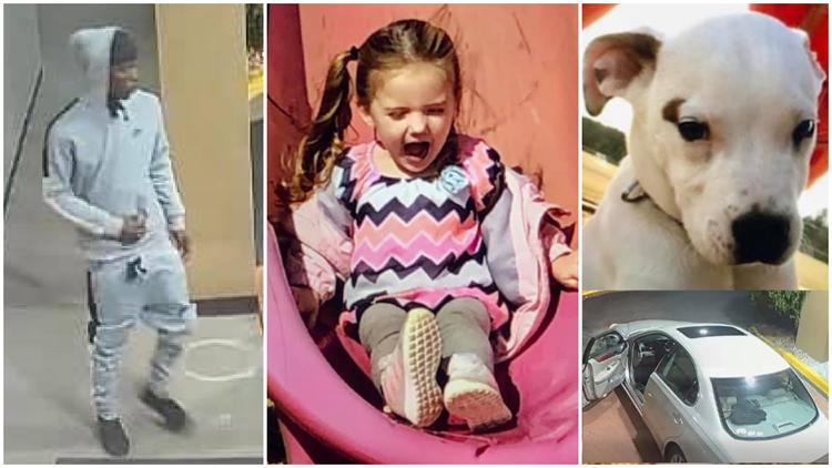 SC AMBER Alert canceled: Toddler found safe, suspect still at large