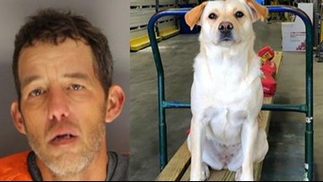 1 arrested after truck and dog are stolen; dog remains missing