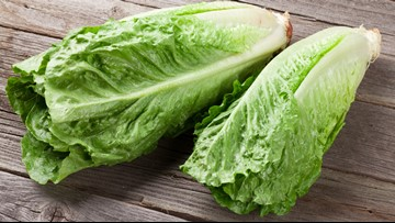 Why is romaine lettuce the subject of several recent recalls?